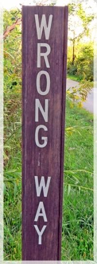 wrong way -9773web
