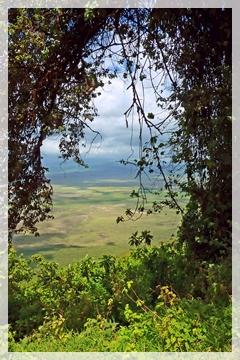 Lake Manyara -Tanzania