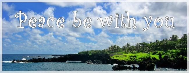 beachdscn5405maui-croppbwy-cropweb