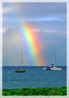 rainbow - kawai