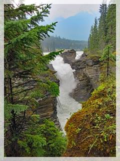 Athabasca Falls - Alberta, Canada