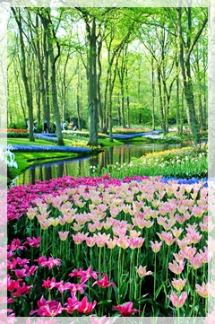 Kuchenhof Gardens netherlands