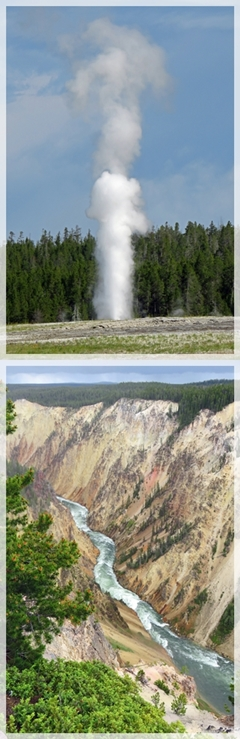 lion geyser - grand canyon of yellowstone