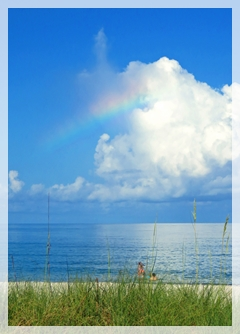 Lowdermilk Park rainbow