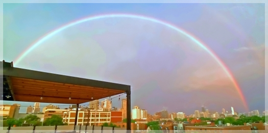 chicago rainbow