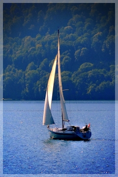lake lucerne sailboat