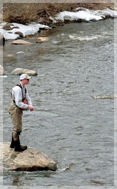 yampa river fishing