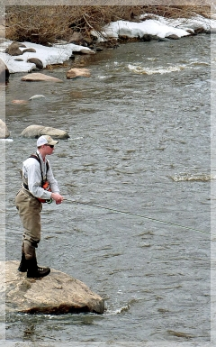 yampa river fishing