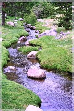 Burgess Creek - Steamboat CO
